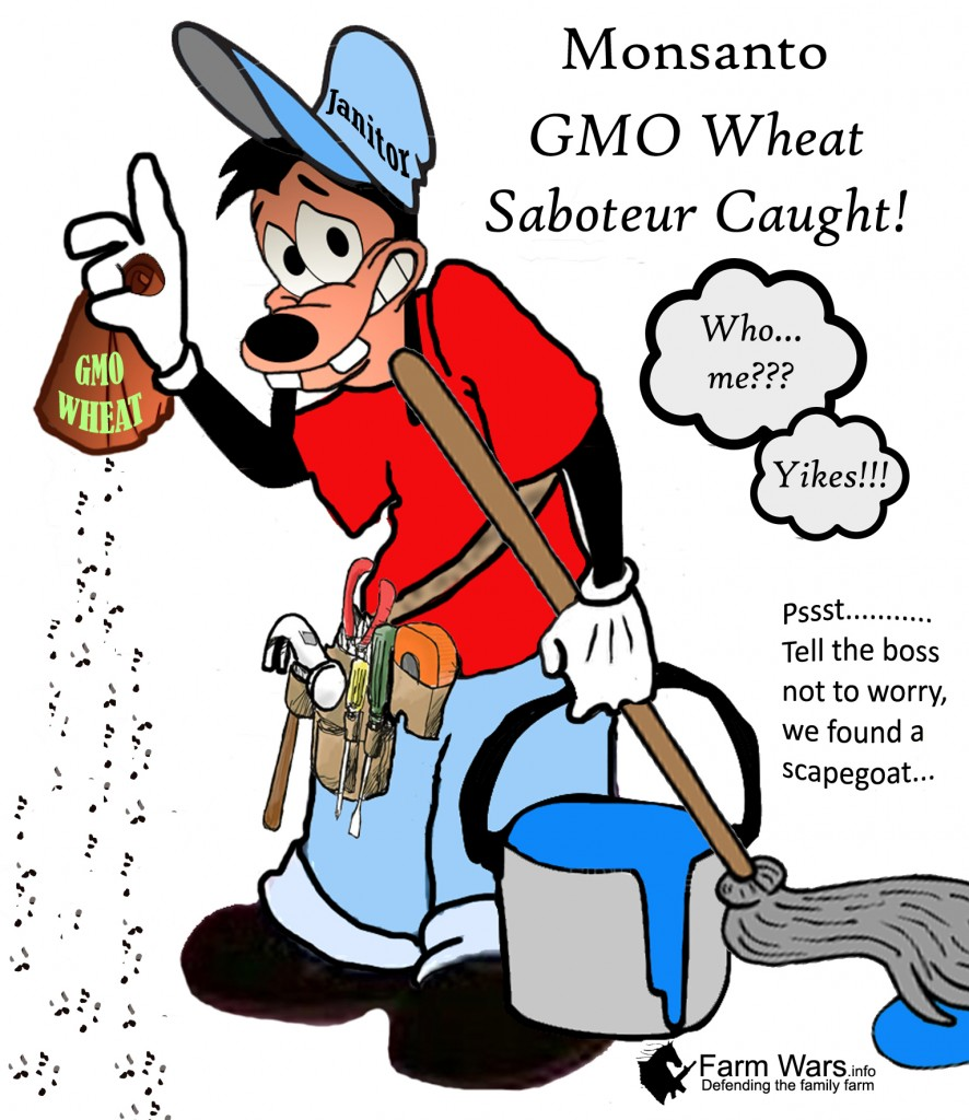 Monsanto, GMOs and Conspiracy Theories Surrounding them ...  |Gmo Conspiracy Theories