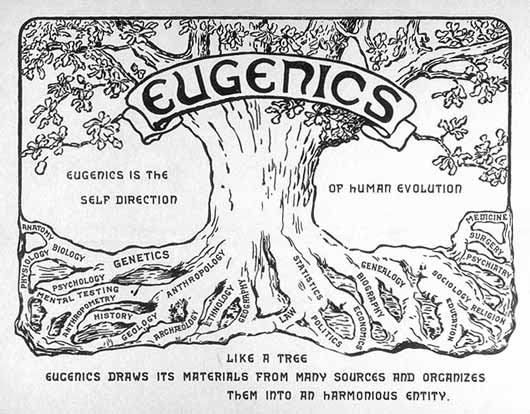 EugenicsTreeUSlg Transhumanism: Genetic Engineering of Man – the New Eugenics