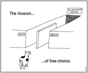 free choice illusion
