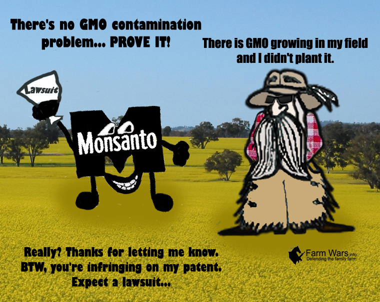 GMO Contamination Dusty