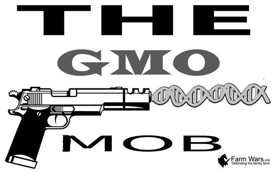 gmo MOB